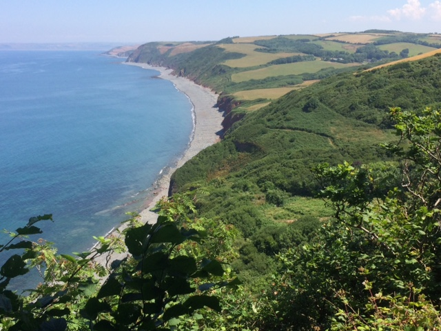20180708 Peppercombe and the route to Westward Ho
