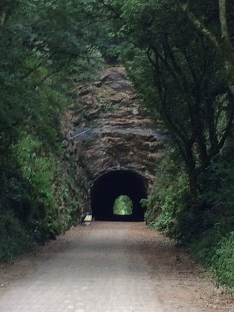20180716 tunnel on the Strawberry Line trail