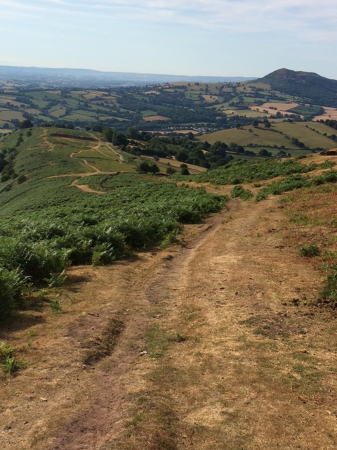 20180725 Ascent to the Hatterall Ridge