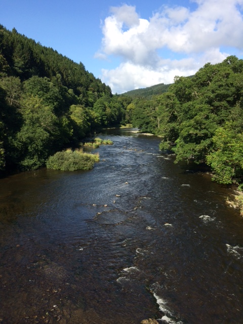 20180825 The Tweed at Yair Bridge