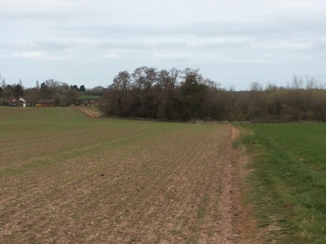 20190331 Typical field path near Longnor