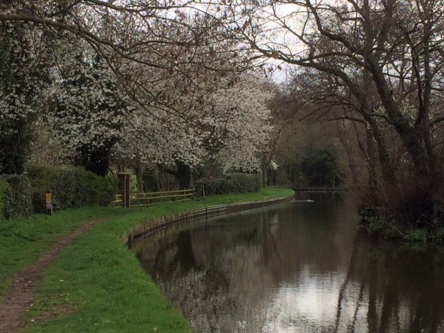 20190401 Staffordshire and Worcester Canal