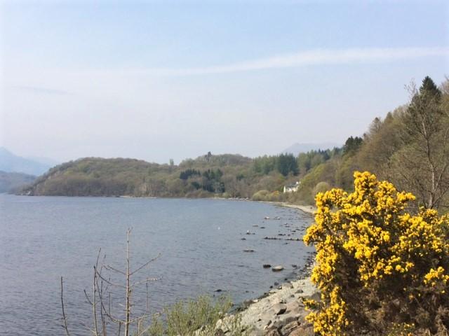 20190421 Loch Lomond near Cashel