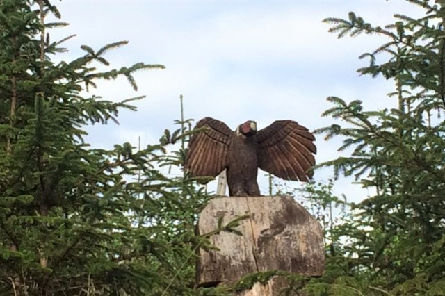 20190429 Eagle woodcarving