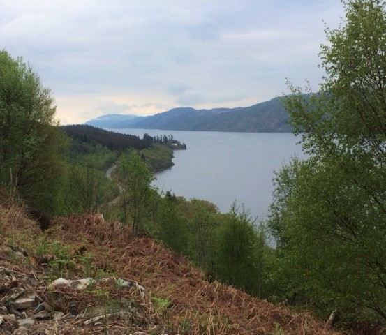 20190501 Looking north along Loch Ness