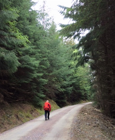 20190501 Wyn on a typical section of the trail to Invermoriston