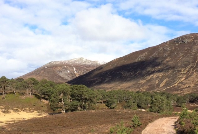 20190509 Carn a Mahaim from Glen Luibeg